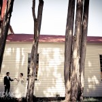 Melissa and Yasuo, Chapel and Trees, Arrowood Photography